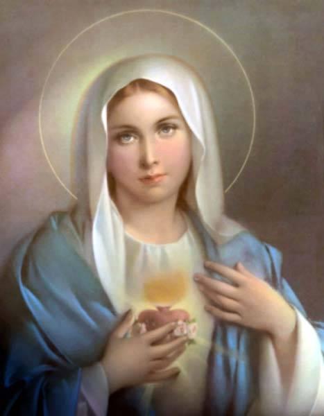 Coeur Immaculé de Marie dans images sacrée
